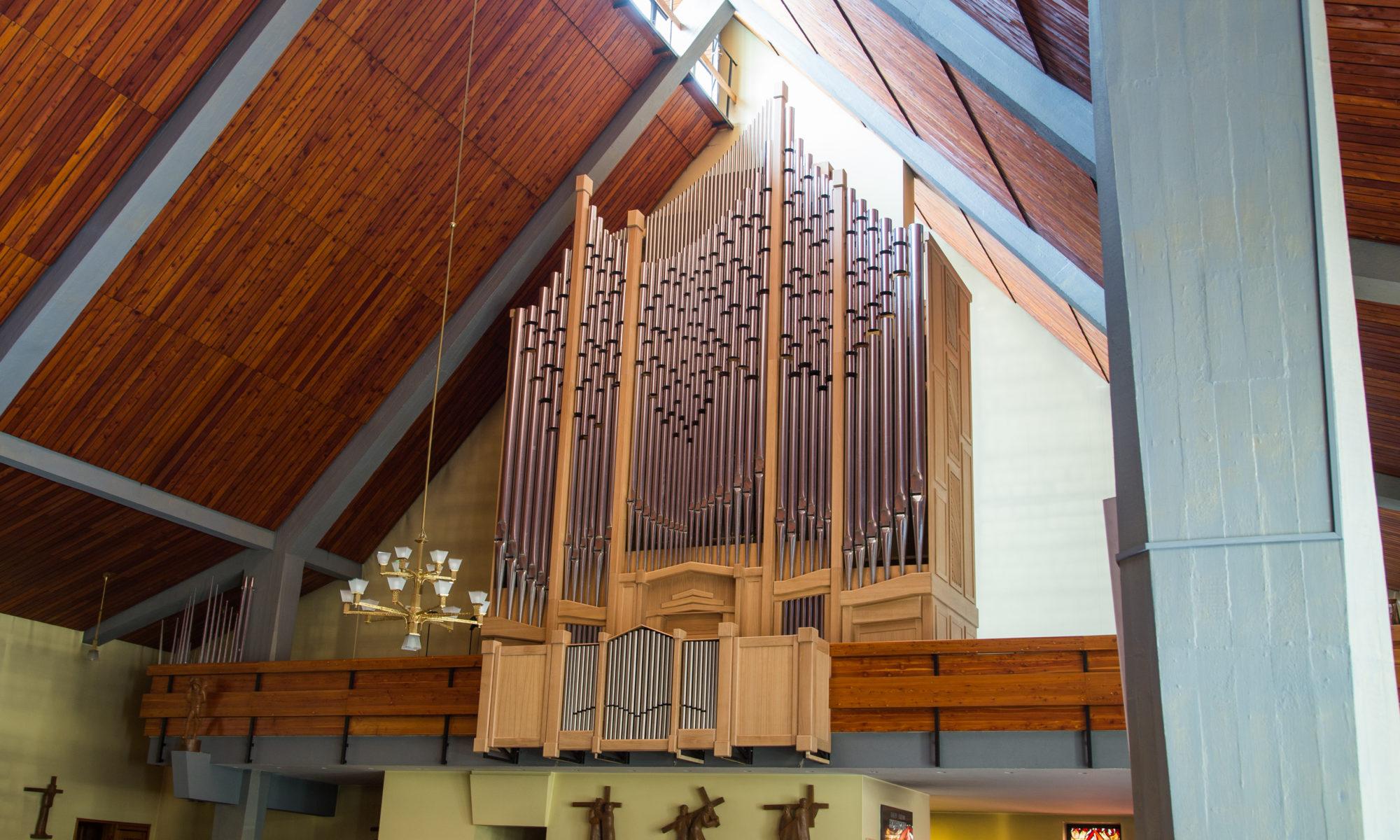 Organy w Aninie